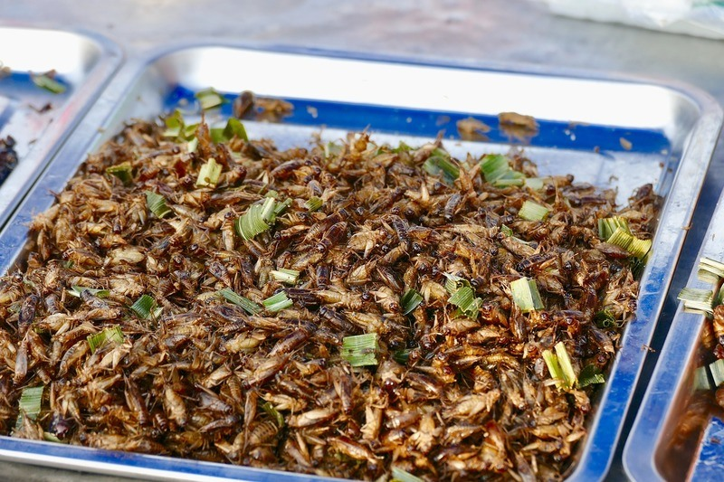 insects-delicacy-thailand