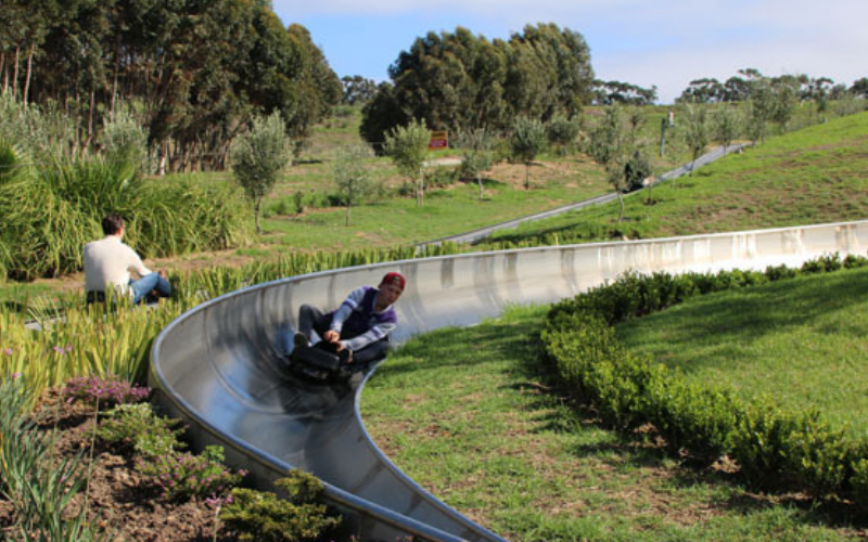 bobsled going along a tabogganing track