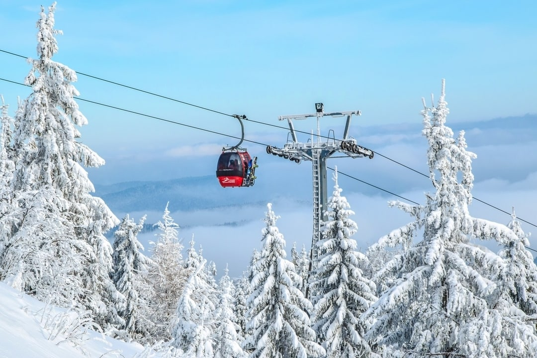 Cable car over ski slopes and tree lines